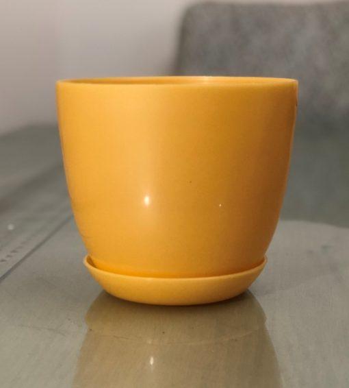 Yasmin Yellow Pot nabatdelivery