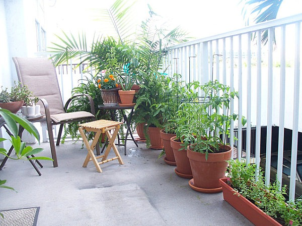 beautiful-small-apartment-balcony-garden-ideas – Nabat Delivery