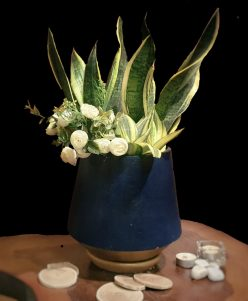 Snake Plants (Sansevieria) white Artificial flowers with pots nabatdelivery