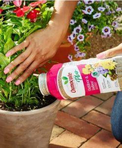 Fertilizers & Plant Food