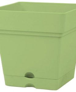 Mintra Plastic Square Planter, 18x18cm - Lime Green nabatdelivery